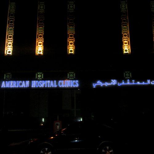 American Hospital - Health care