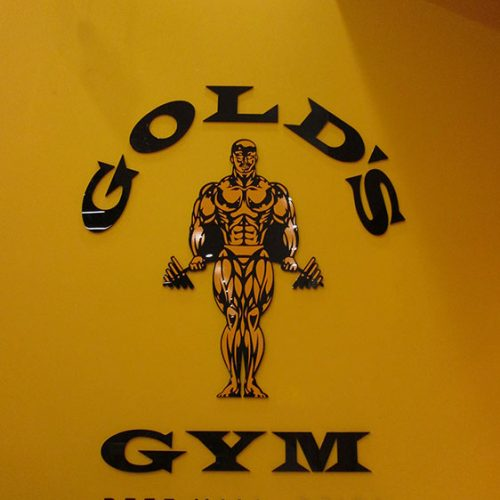 3.Gold's gym